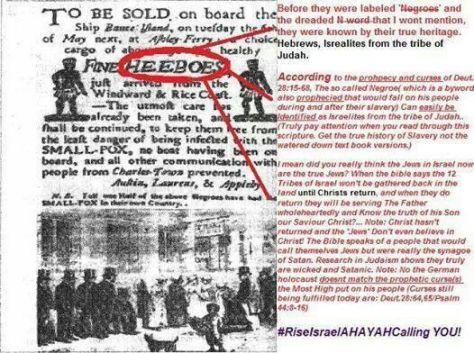 a123a1b1061a1d164533fb2536ea04c4--history-facts-black-people