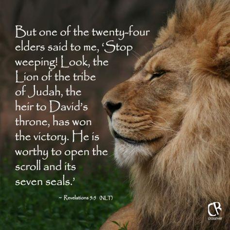 bd146b2bc29057b386618fe45c63eab6--lion-of-judah-jesus-about-lion