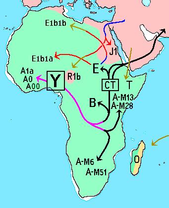 Haplogrupos_ADN-Y_África