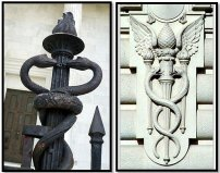 Bronx-Zoo-Caduceus-Book-and-Snake-Pine-Cone-Manhattan-Building