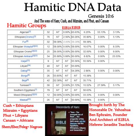 hamitic thesis