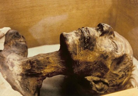 Mummy-of-Ramses-II.jpg