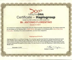MEU PAI HAPLOGROUP Y-DNA E1b1a7a