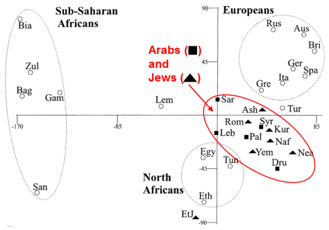Hammer_2000_Jew_Arab_Ychromosome