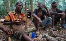 Baka-Tribe-Of-Central-Africa-Struggle-For-Survival-3